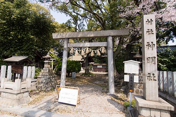 桜神明社鳥居と境内
