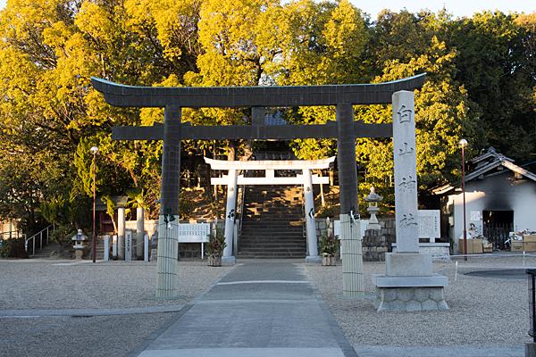 小幡白山神社鳥居と境内