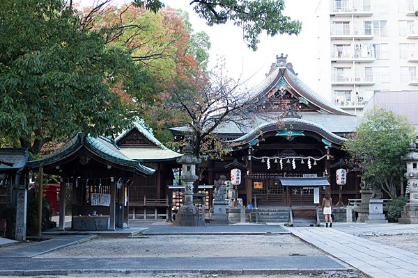 高牟神社境内と社殿