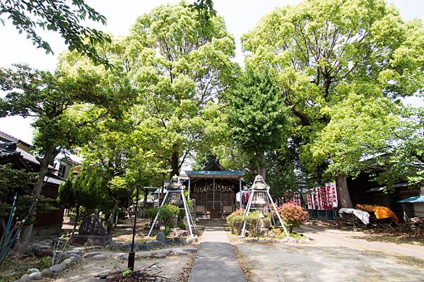 大秋八幡社境内と拝殿