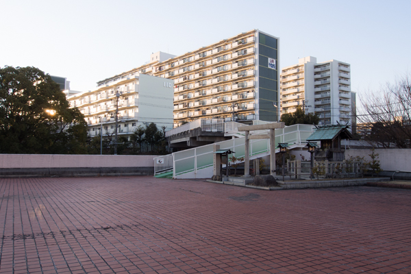 千代ヶ丘椿神社