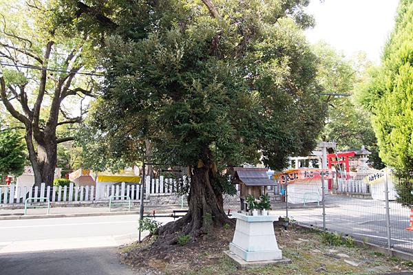 小社(川名本町)